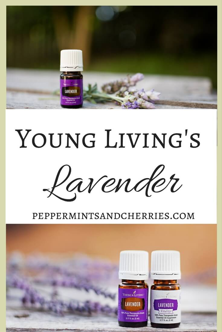 Young Living's Lavender Essential Oil