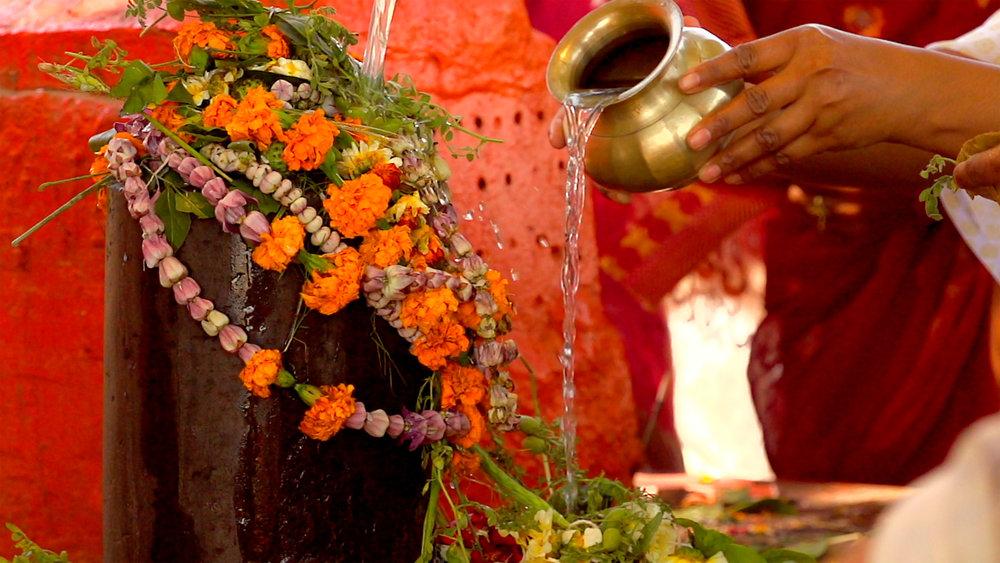 Shiva Lingam flowers.jpg