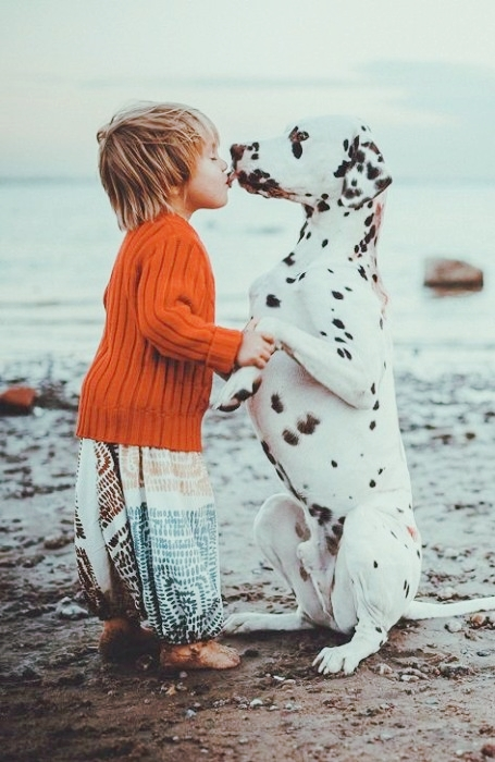 dogs-and-babies-10.jpg