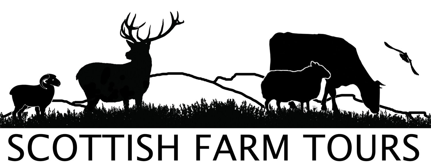 Scottish Farm Tours