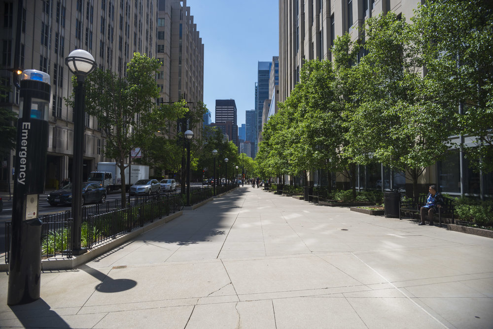 Northwestern University Chicago Campus Streetscape