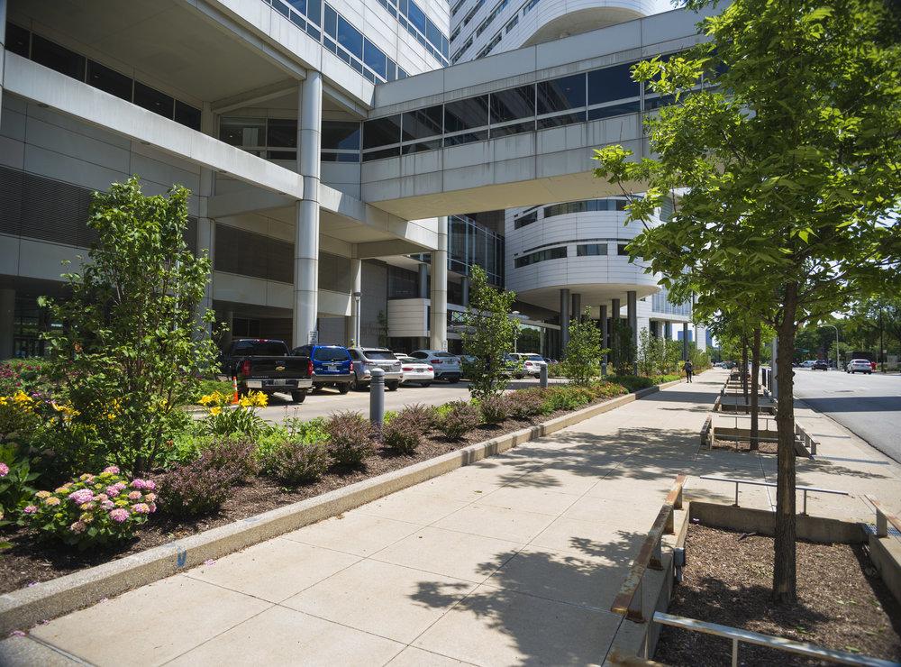Rush University Medical Center Expansion