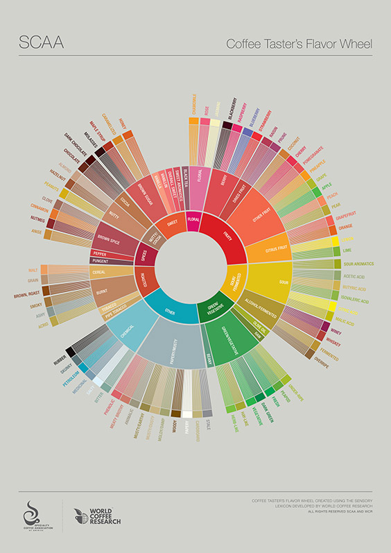 The SCAA's Coffee Taster's Flavor Wheel - This flavor wheel was updated in 2016 in collaboration with World Coffee Research (WCR) and the work of dozens of professional sensory panelists, scientists, coffee buyers, and roasting companies collaborating via WCR and SCAA.
