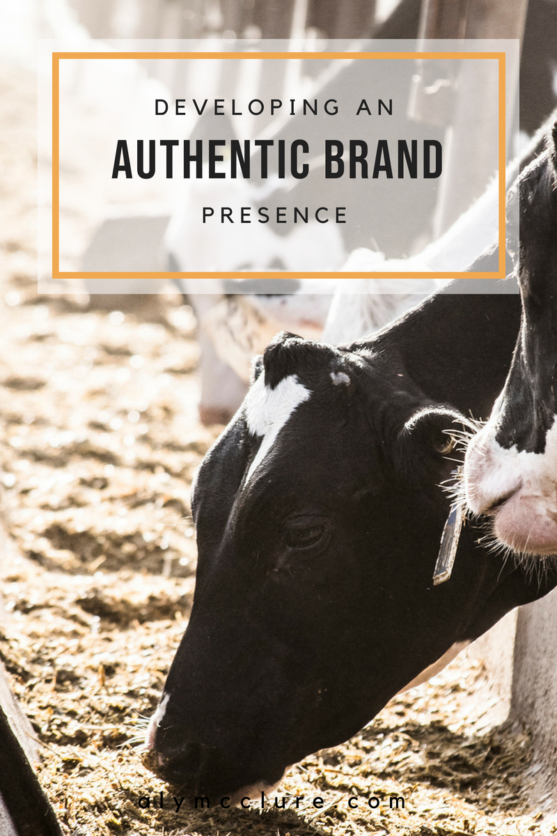 Developing Brand Authenticity