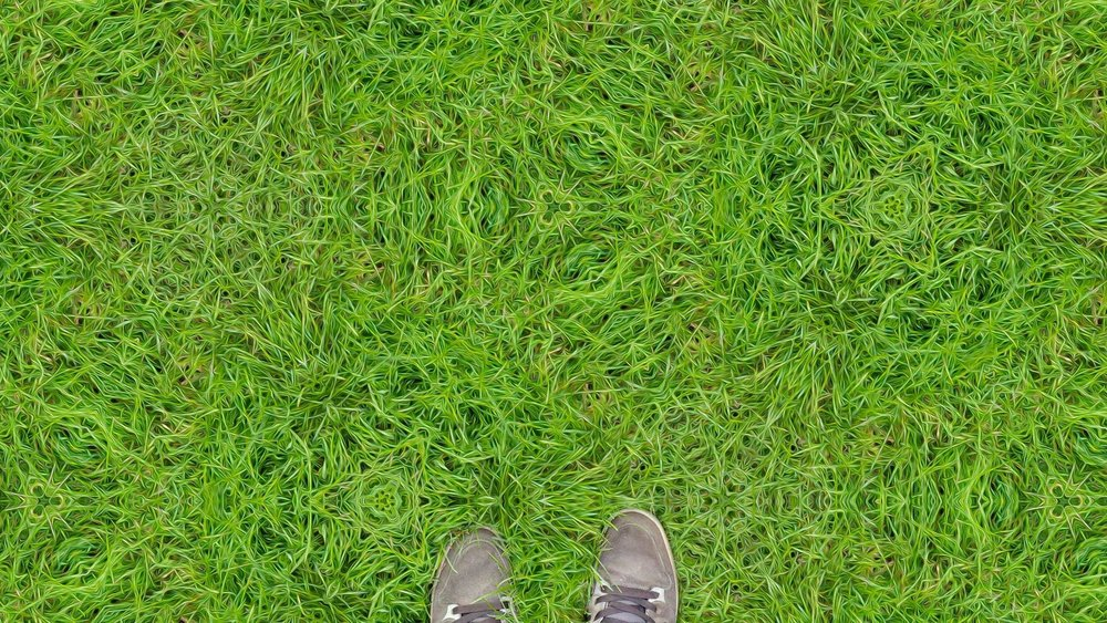 Grass_on_2cb_by_inifinity.jpg