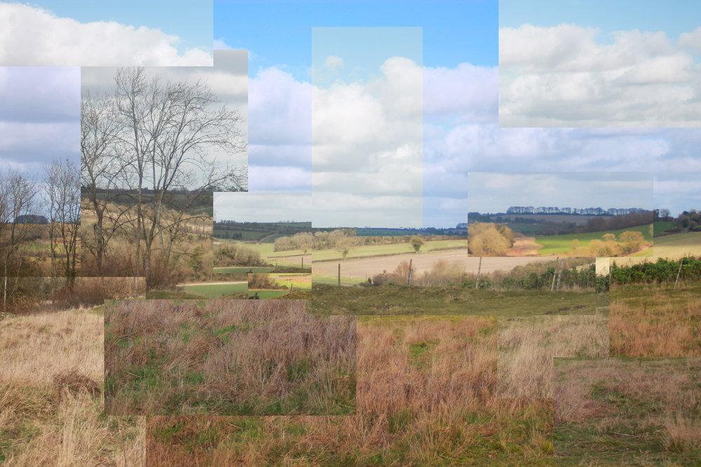 Cubist fields