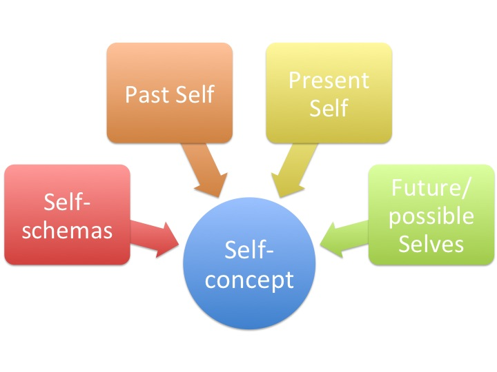 One's self-concept is thought to be made up of self-schemas, and their past, present, and future selves.