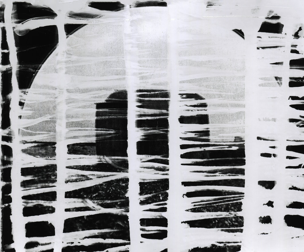 Lost and Found in Cambersands, 2015, Photogram_14.jpg