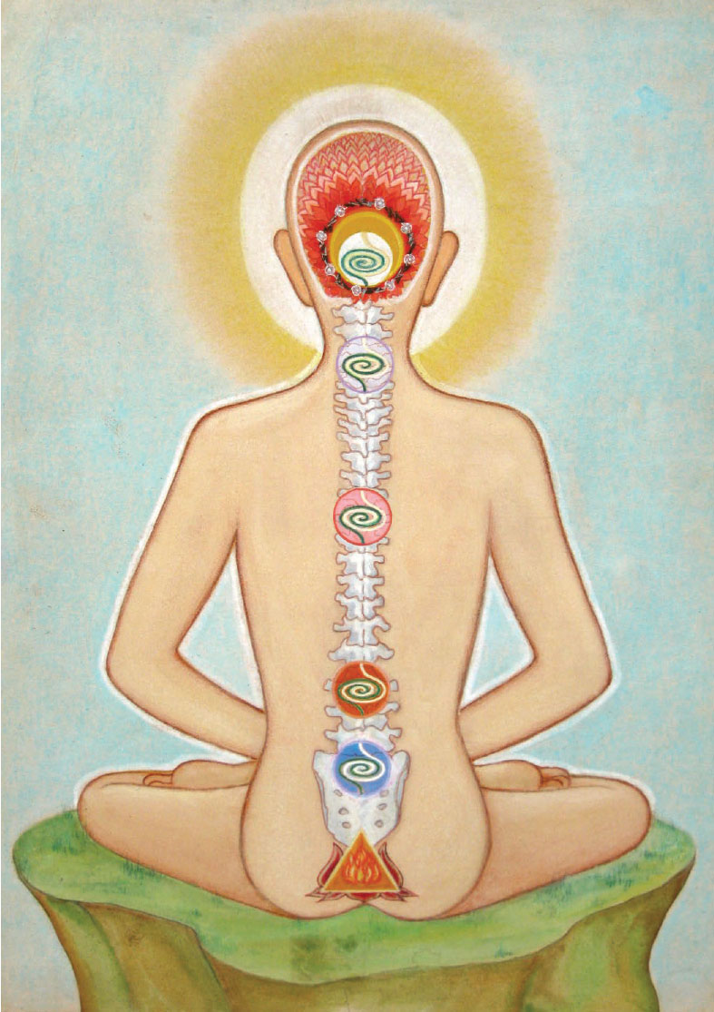 Back View of the Nine Chakras