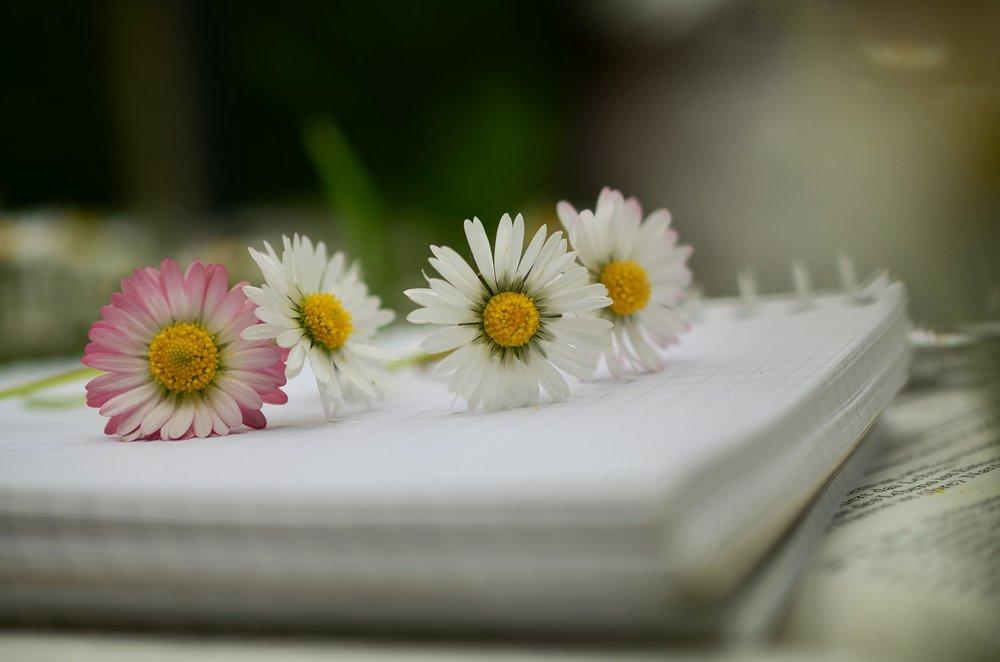 notebook-1405306_1920.jpg