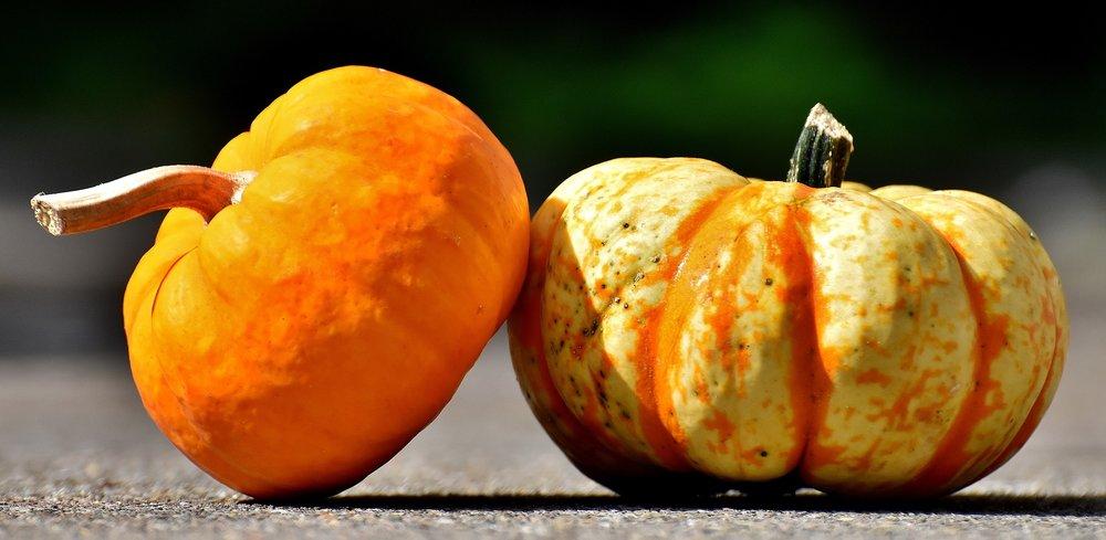 pumpkins-2825186_1920.jpg