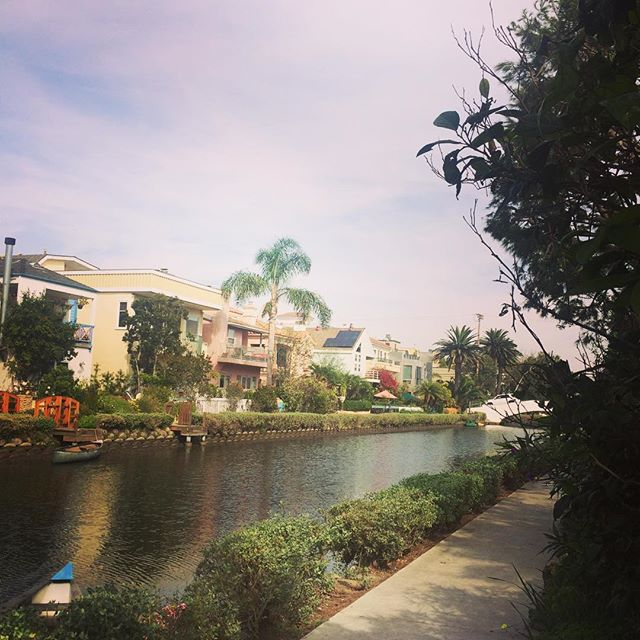I'm making a habit out of LA in November. ✨