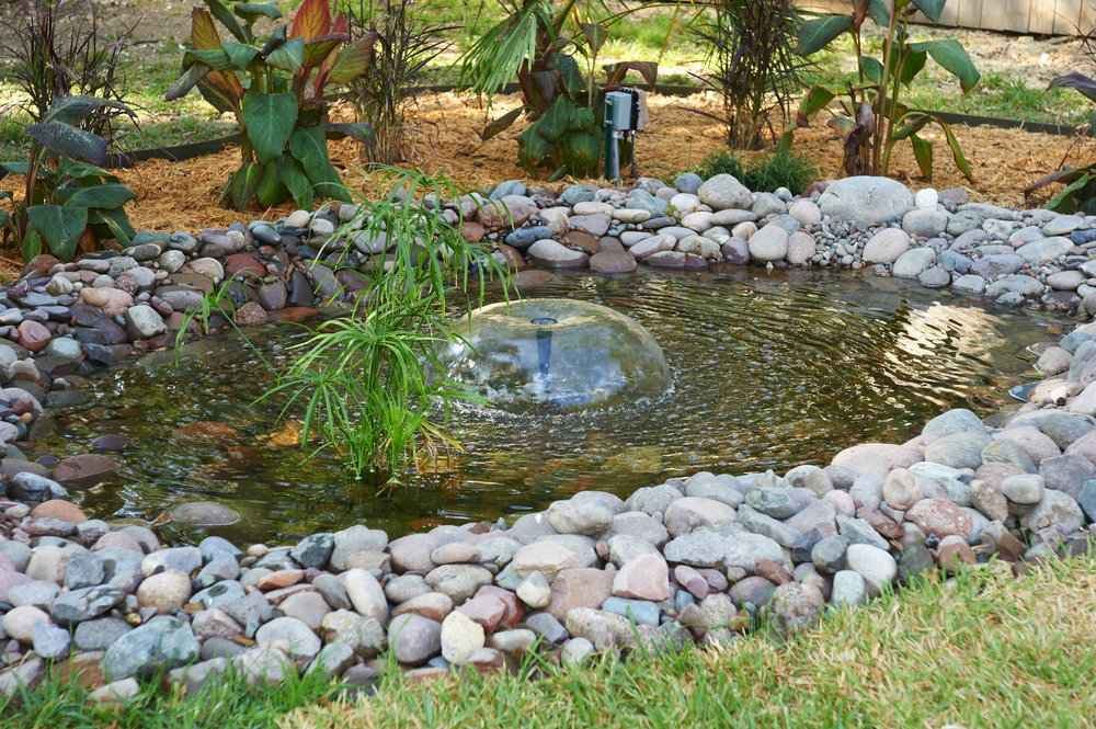 Totalpond for Filling in a pond