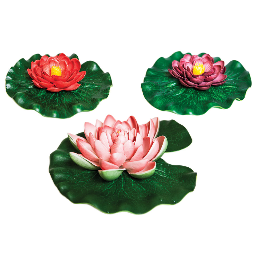 Floating lily pad variety pack totalpond izmirmasajfo