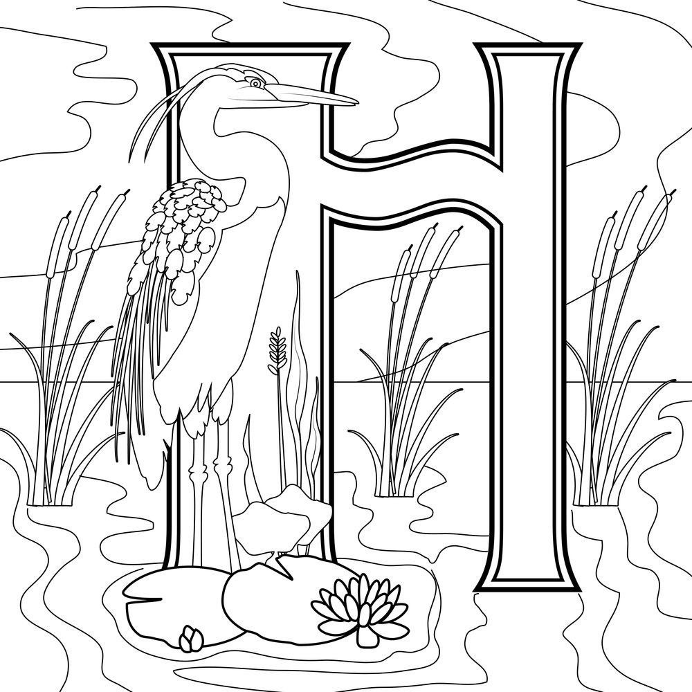 TP_Alphabet_H-4.jpg