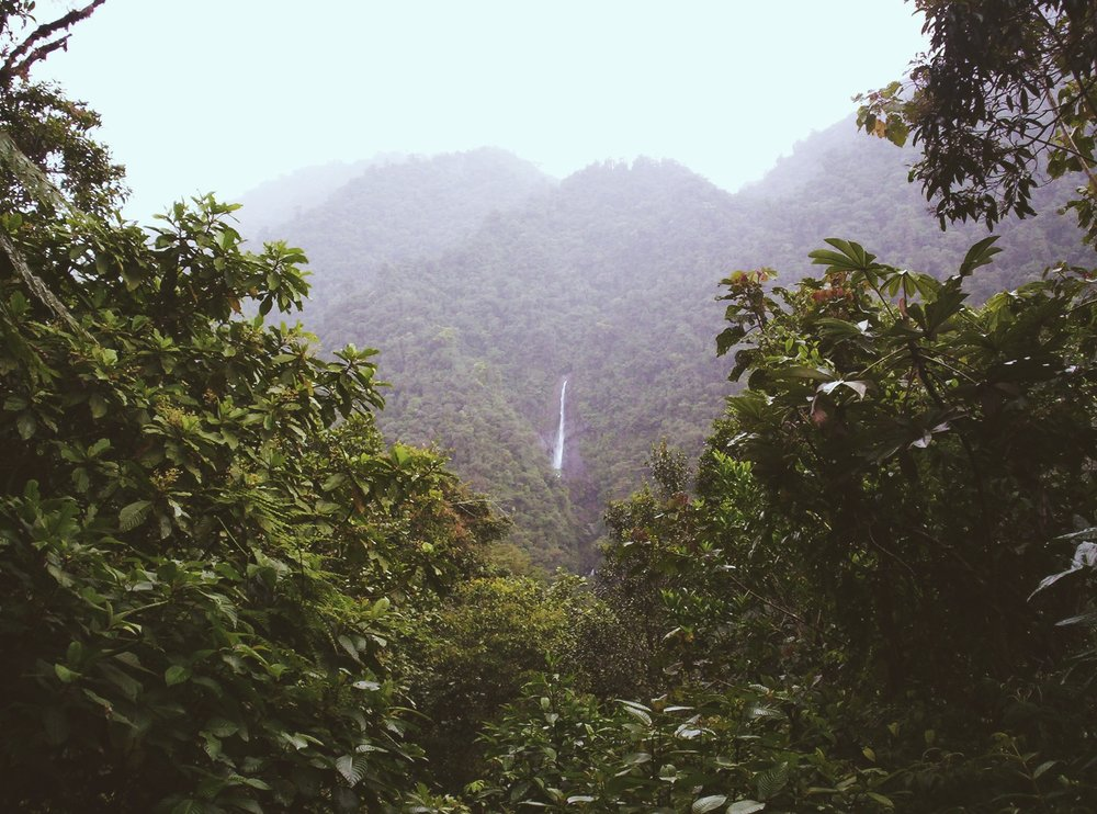 Costa Rica_VSCO_royaltyfree.JPG