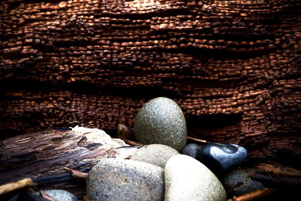 forest altar.jpg