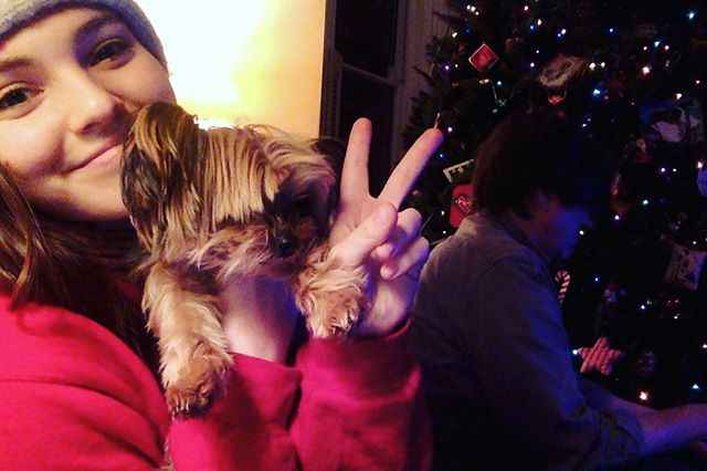 my dad is on the phone trying to activate my new phone and i am on muscle relaxers trying to post on instagram . #fun #girls #girlsnightin #musclerelaxers #yorkiesofinstagram #addiesofinstagram #sothisischristmas