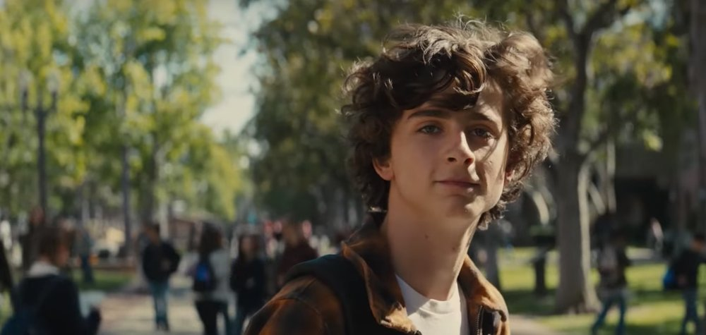TIMOTHÉE CHALAMET | Nic Sheff | BEAUTIFUL BOY