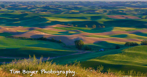 A classic Palouse sunset from Steptoe Butte started the workshop off in the right way.