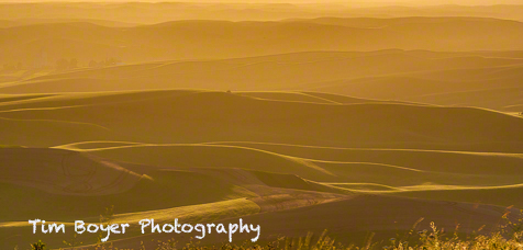 The Palosue sunset from Steptoe Butte but faced nearly into the sun producted these warm colors.