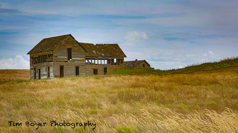 I explore a new area of the Palouse everytime I'm there and with  4,000 square miles there's still a lot to discover.  This reminded my of Dorthy and maybe living in Kansas after the tornado took her to OZ.