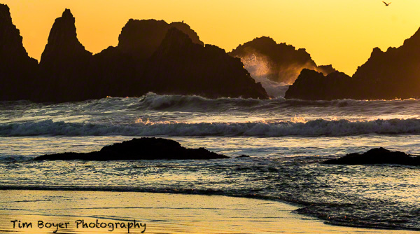 Seal Rocks at sunset.