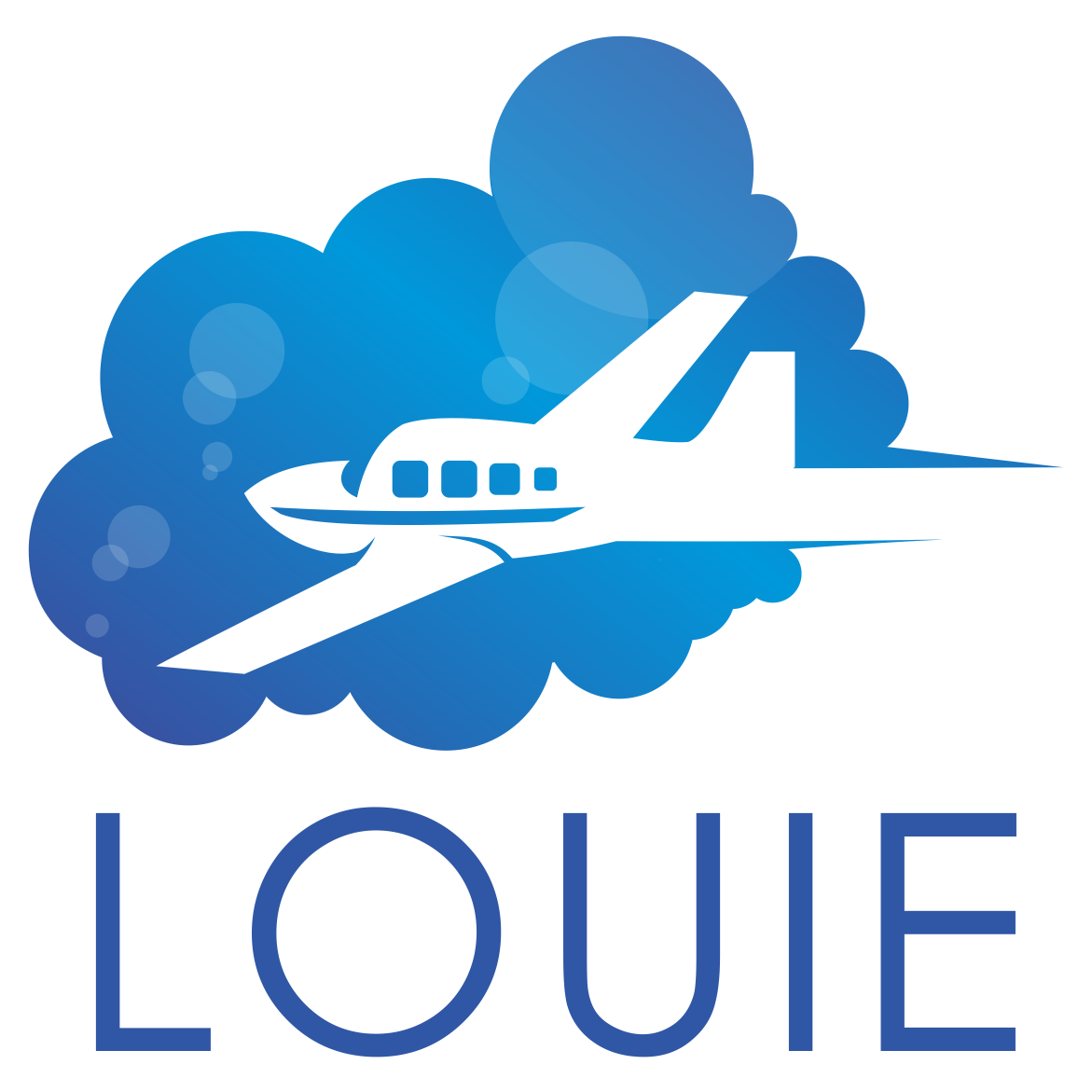 Public Charter Agreement Fly Louie