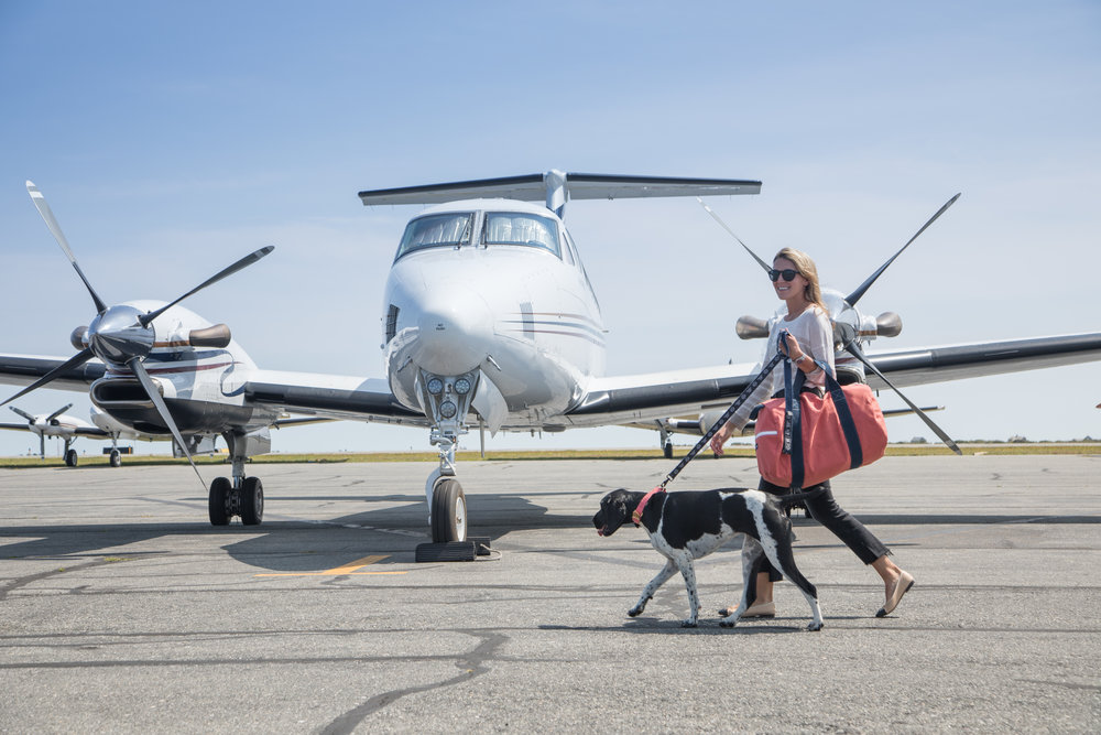 where can we take you? - Fly Louie launched its service between NY and Nantucket in 2017 and ran additional service between NY and Durham for NCAA basketball games Spring 2018. We're excited to resume regular service to Nantucket throughout Summer 2018.