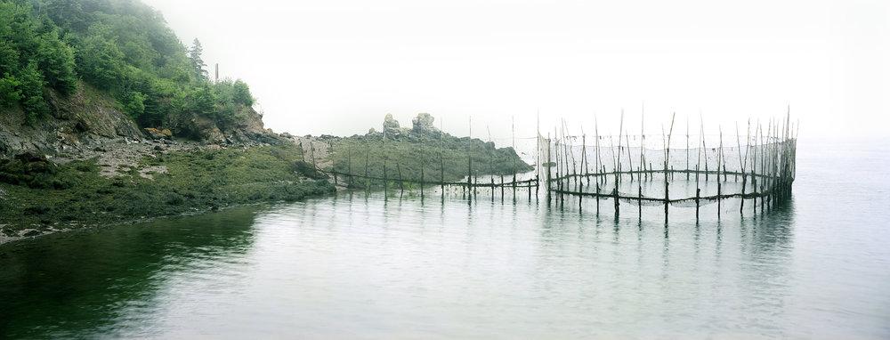 Weir Deer Island, Thaddeus Holownia