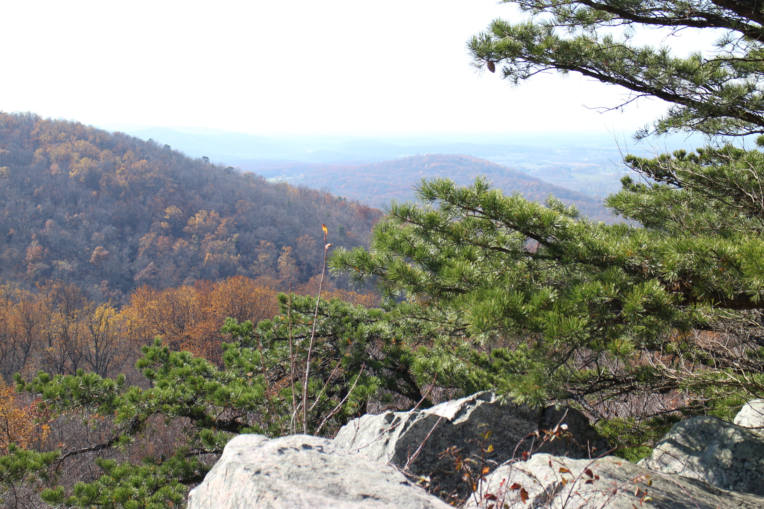 Hiking in Appalacian Trail