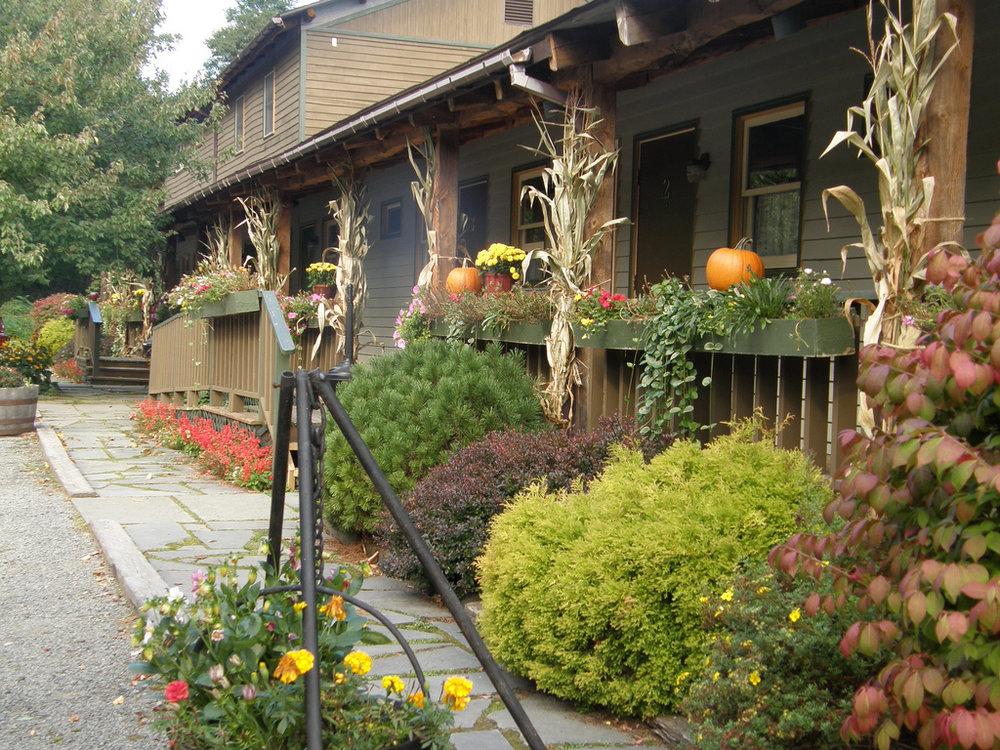 fall-2009.jpg