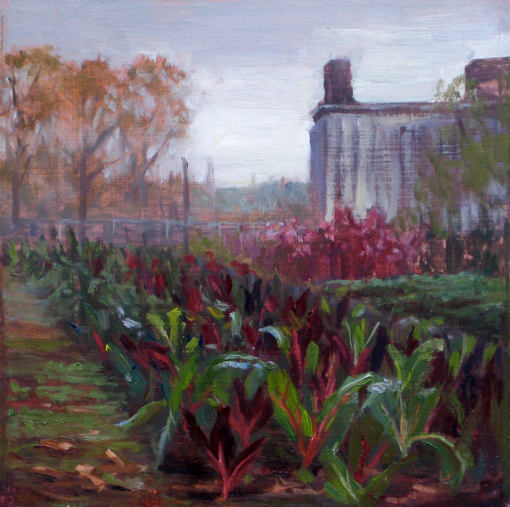 W-NITC-Swiss Chard In Red Hook-Dalrymple 8x8-oil on canvas-2010-SOLD.jpg