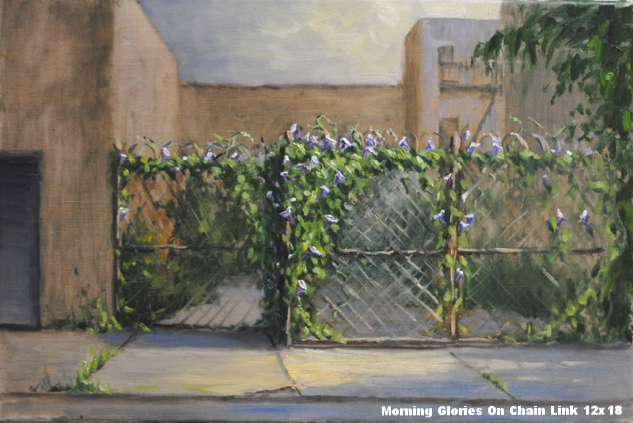 morning-glories-on-chain-link.jpg