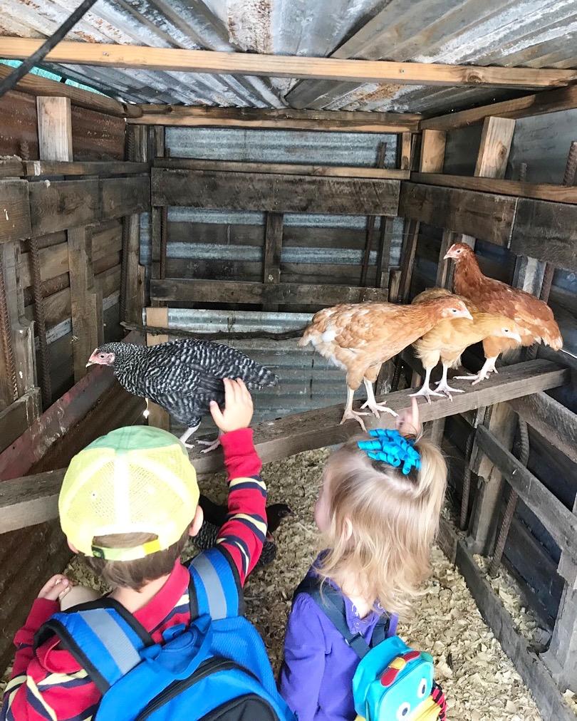 Kids in chicken coop.JPG