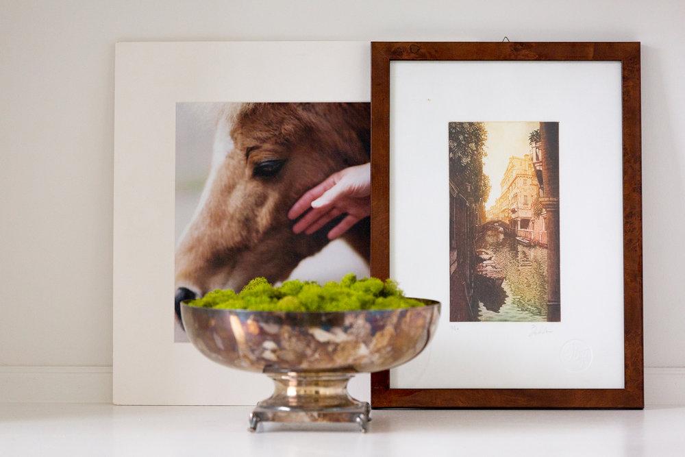 HorselyDesigns-36.jpg