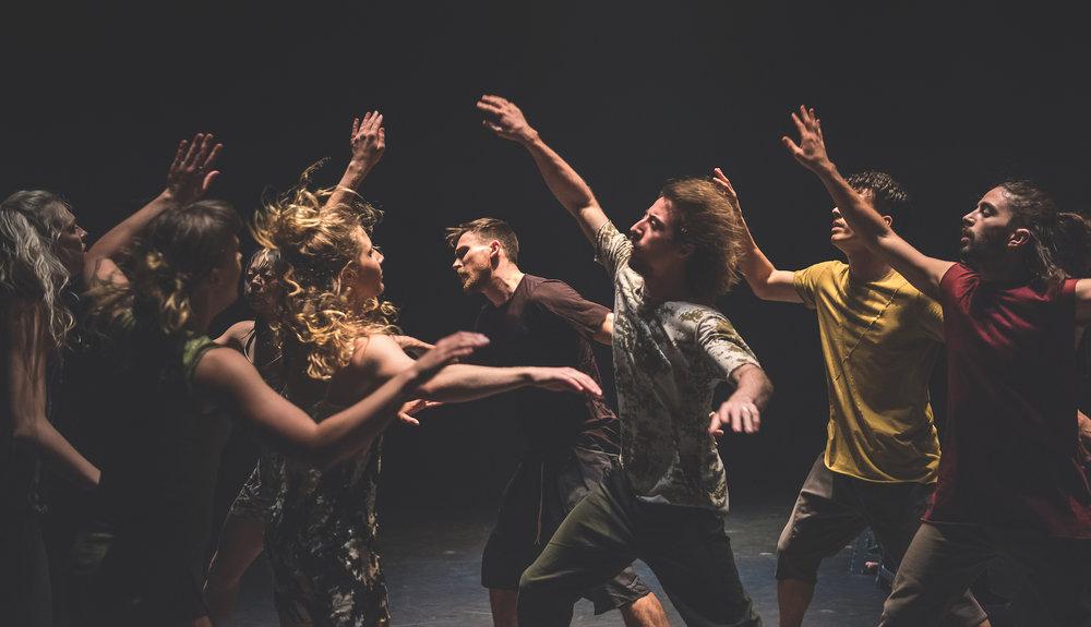 'Attractor' Dancenorth.