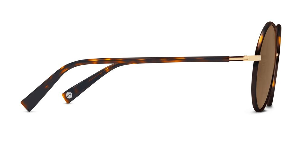 6c253dac0b Phipps Sunglasses — Eyewear Blogger