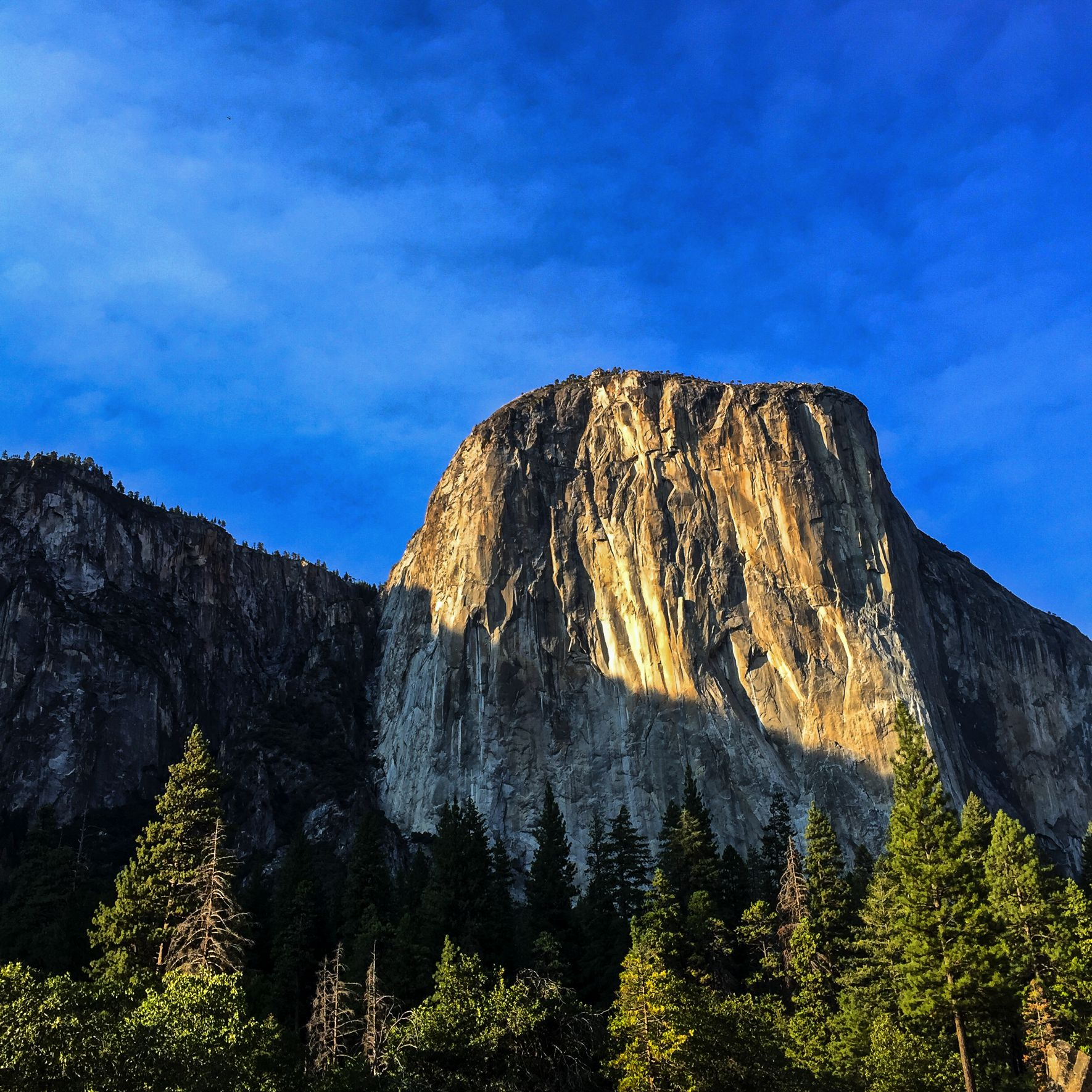 Steen-Jones-Artist-Travel-USA-Yosemite-11.jpg