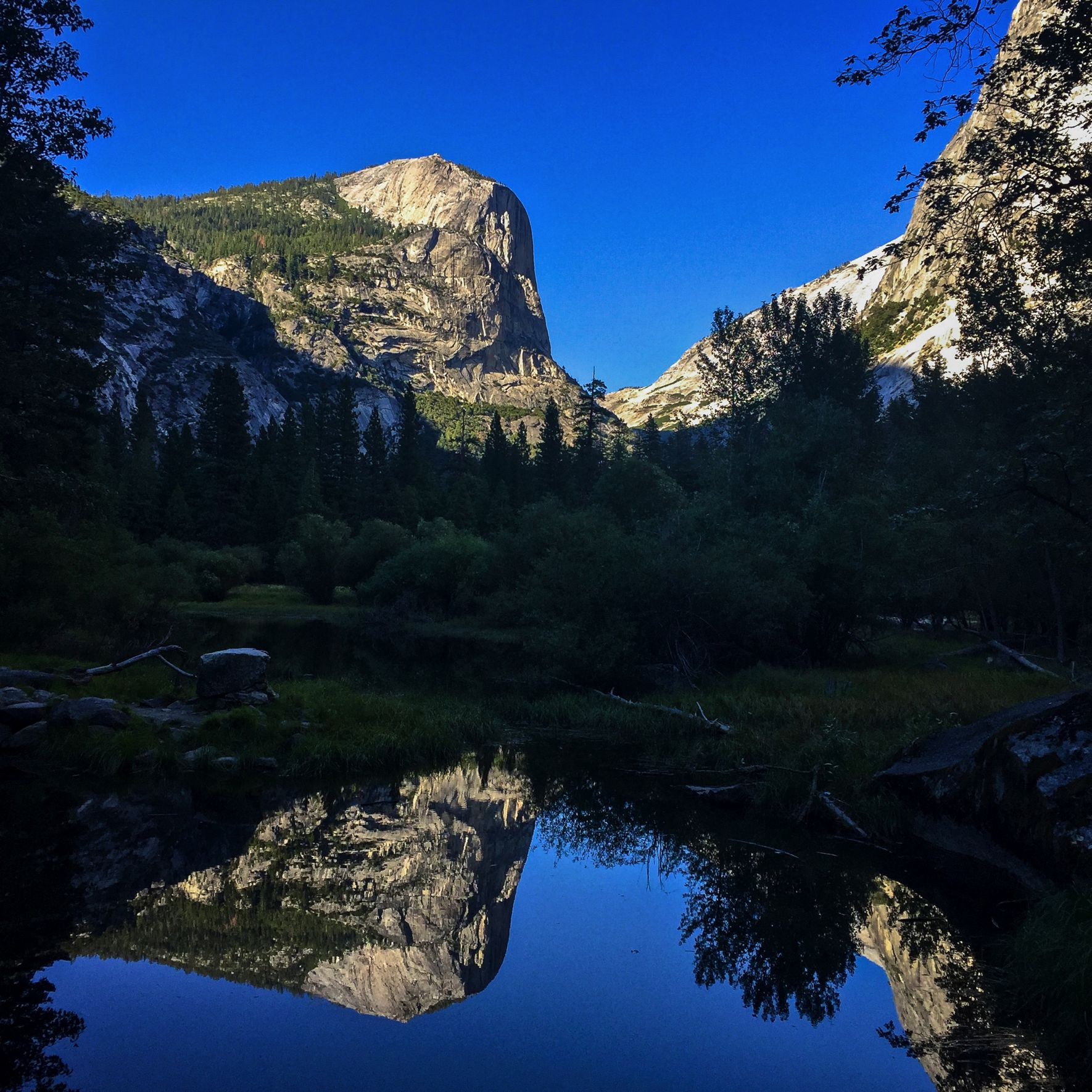 Steen-Jones-Artist-Travel-USA-Yosemite-20.jpg