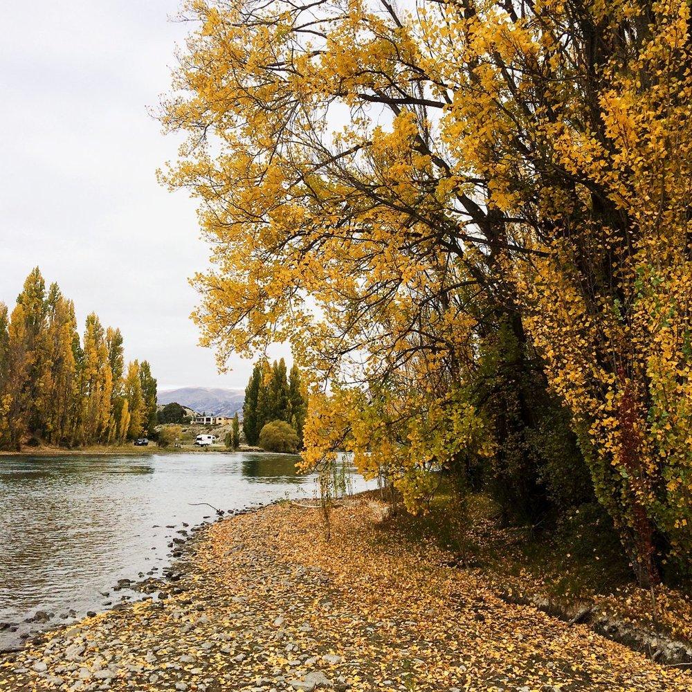 Steen-Jones-Artist-Travel-New-Zealand-Instameet-04.jpg