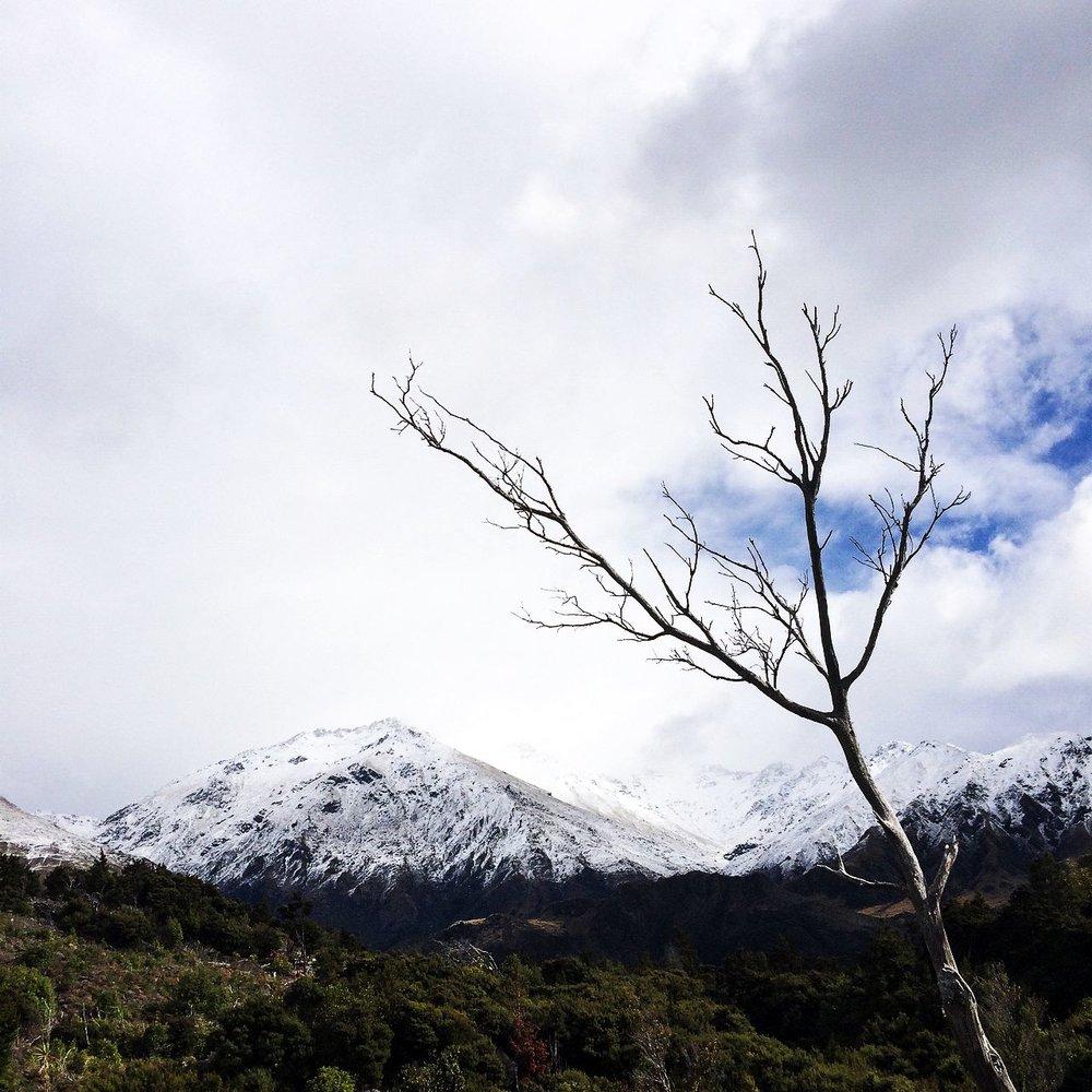 Steen-Jones-Artist-Travel-New-Zealand-Instameet-20.jpg