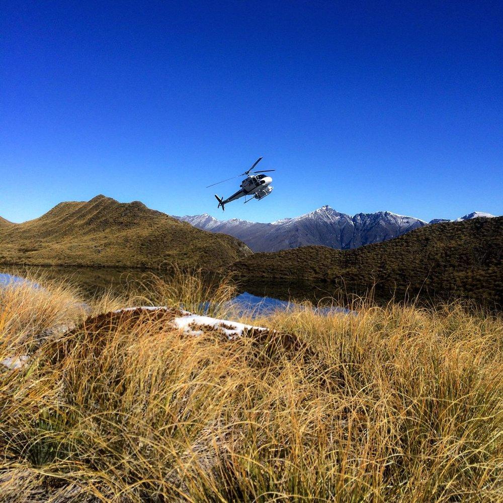 Steen-Jones-Artist-Travel-New-Zealand-Instameet-24.jpg