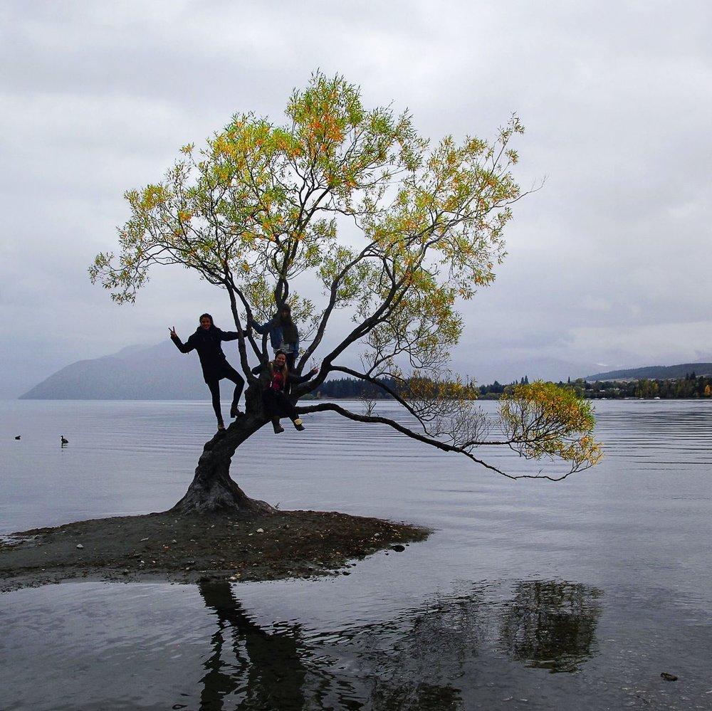 Steen-Jones-Artist-Travel-New-Zealand-Instameet-37.jpg