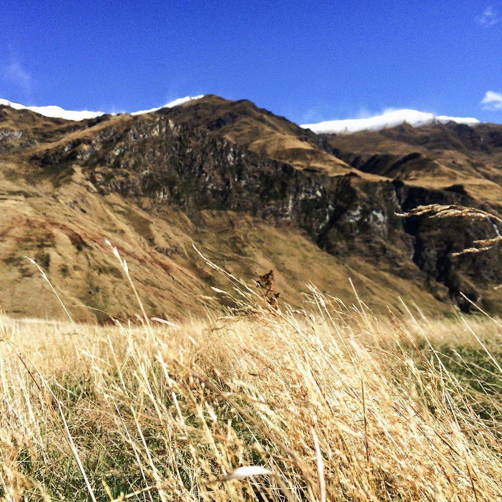 Steen-Jones-Artist-Travel-New-Zealand-Instameet-53.jpg