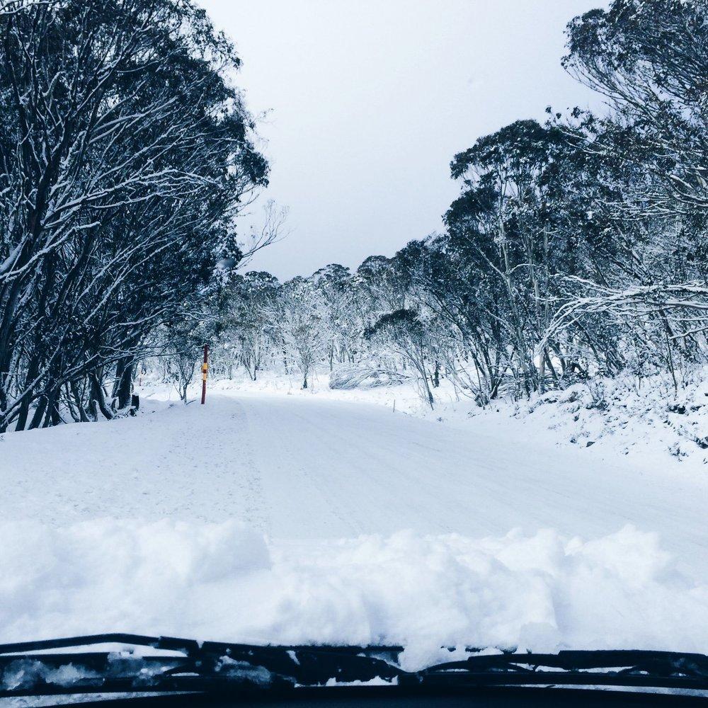 Steen-Jones-Artist-Travel-Australia-01.jpg