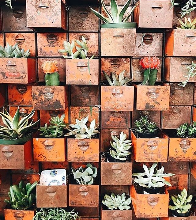 Who else just loves this idea? Find quirky ways to bring old pieces to life and make your home your own. A little extra greenery is always welcome! 🌿  Take a browse through our centre and courtyard in the heart of Milton for beautiful home and lifestyle inspiration 💫 📷: @mrs.paulina.wise . . . .  #houseporn #plants #greenery #vintage #antique #diy #creative #interiorinspo #interiordesign #warehouse #livingroom #houses #indoorplants #indoorjungle #milton #brisbanevenue #brisbaneevent #design #creative #mininmslist #minimalism #style #brisbane #sunshinecoast #byronbay #goldcoast