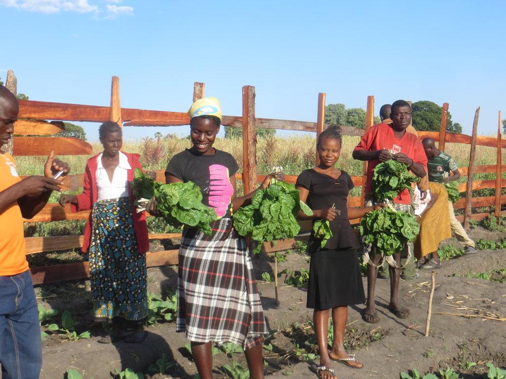 Vegetable Garden in Ngonye Falls