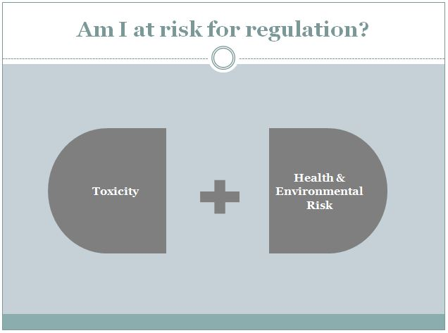 Concept Regulatory Risk.JPG