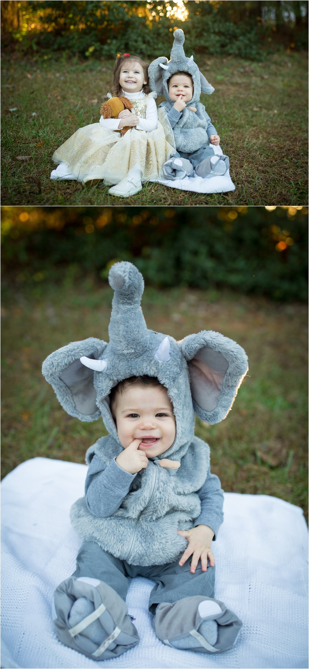 tell me he isn't the cutest little elephant there ever was :)